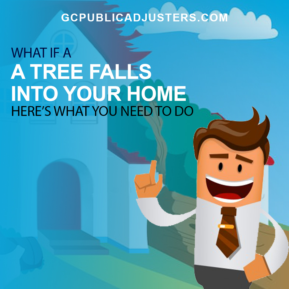 What if Tree Falls into your house