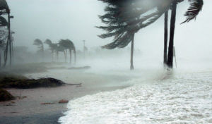 hurricane season florida